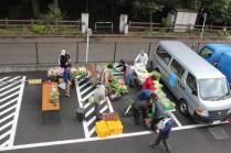 野菜販売_24