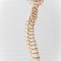 船橋市,自律神経,起立性調節障害,乗り物酔い,姿勢の歪み,骨のズレ,骨盤矯正