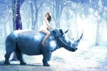 Rhino riding gal