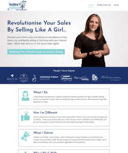salesreflect.com