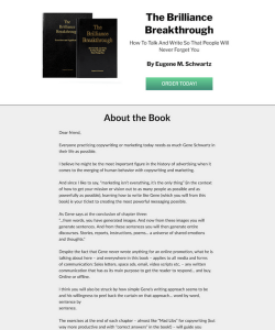 brilliancebreakthroughbook.com