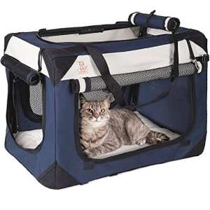 Best Cat Carrier for Car Travel - PetLuv