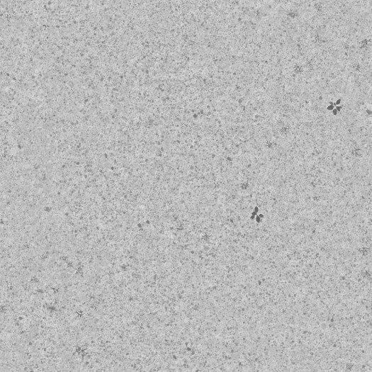 3D Scanned Seamless Gravel Ground Roughness Map