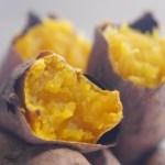 芋掘りの時期はいつ?関西や九州の違いやいい芋の見分け方は?