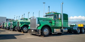 Peterbilt at 2019 American Truck Historical Society