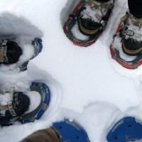 Snowshoe Analogy Day