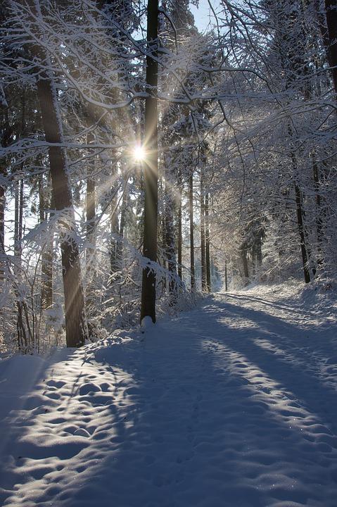 winter-4676765_960_720