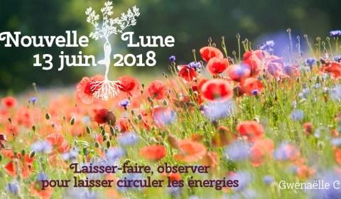 Lune du 13 juin 2018 - Lâcher les rênes pour laisser l'énergie circuler