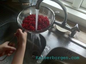 Kaiserborgen.com groseilles