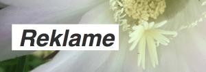 Indlæg med affiliate links