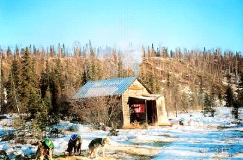Don's Cabin - Ophir