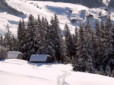 kaisers_winter
