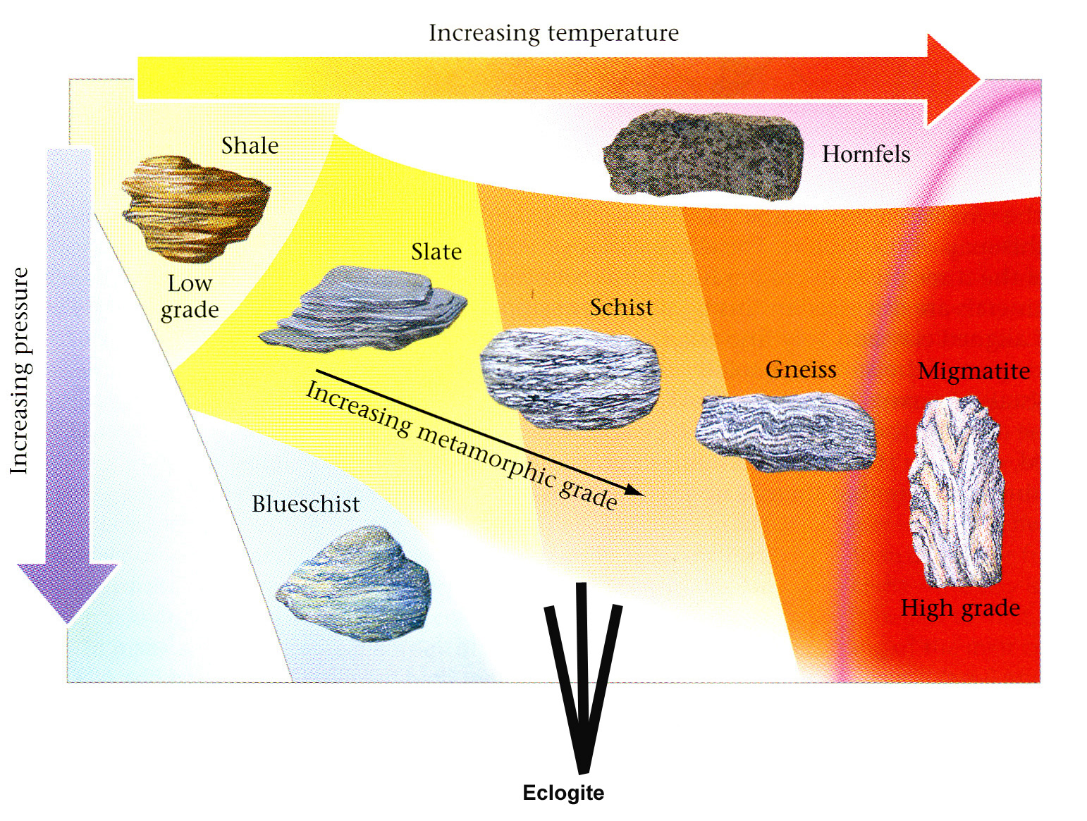 Metamorphic Rock Changes With Temperature And Pressure
