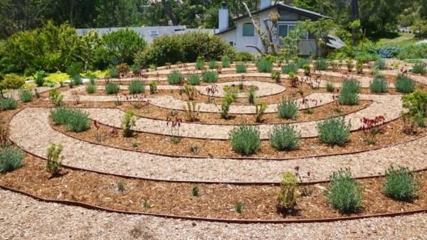 labyrinth flower garden designs Portfolio - Del Mar Backyard Labyrinth