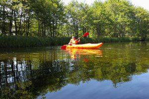 Organizator spływów kajakowych w rzece Piaśnica
