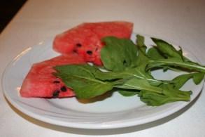 watermelon rocket