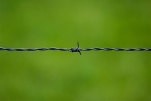 barbed-wire-250822_640