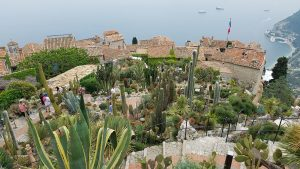 Cactus garden in Eze, France.
