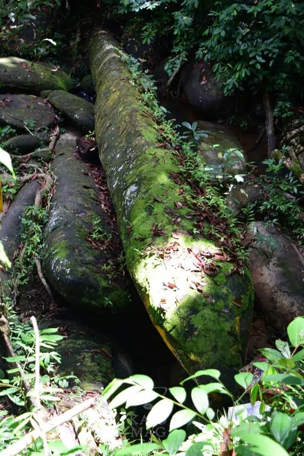 Batu Nabau Engkilili (10)