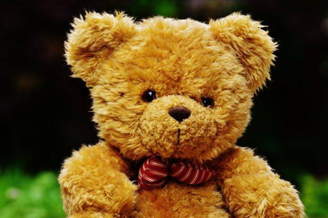 teddy-1444649_1920