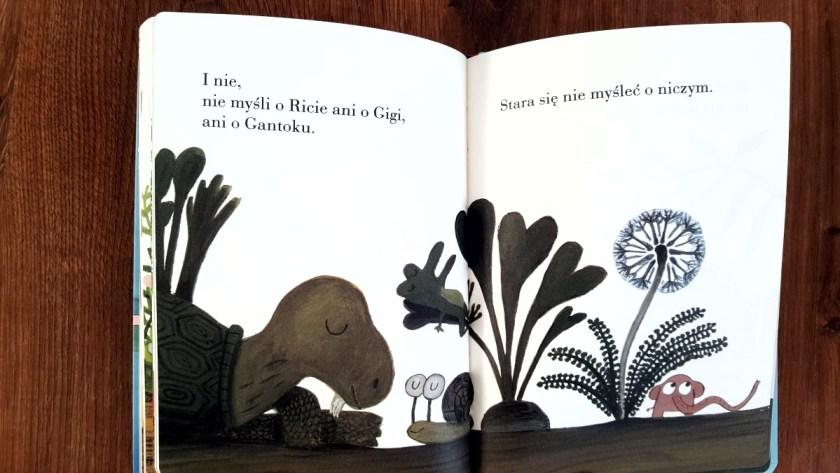 książki 12mc+ 43