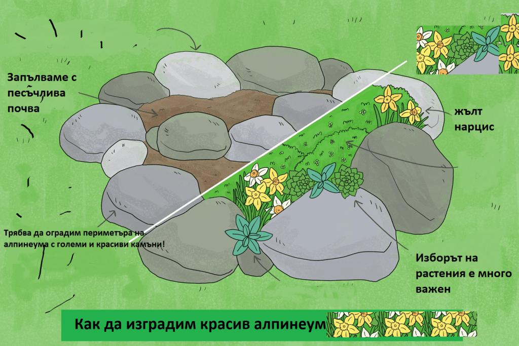 Как да планираме нашия алпинеум в градината.