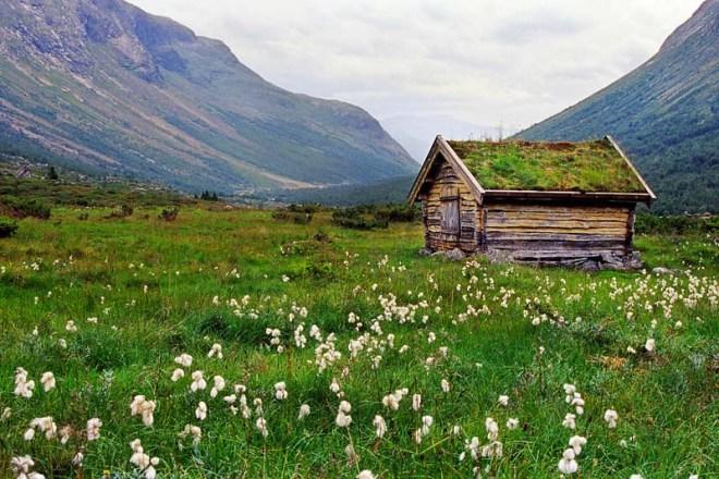 Noorse hut