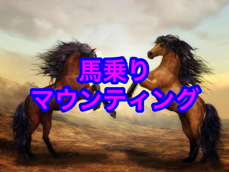 馬乗りマウンティング