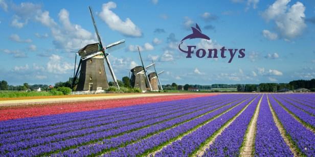 studije-na-engleskom-u-holandiji