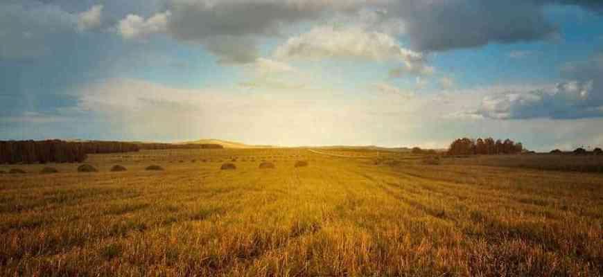 Осень» Лермонтова