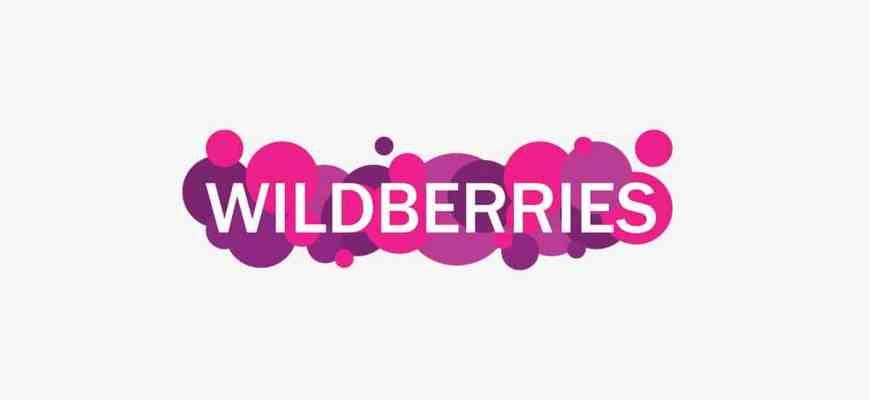 История создания магазина Вайлдберриз (Wildberries)