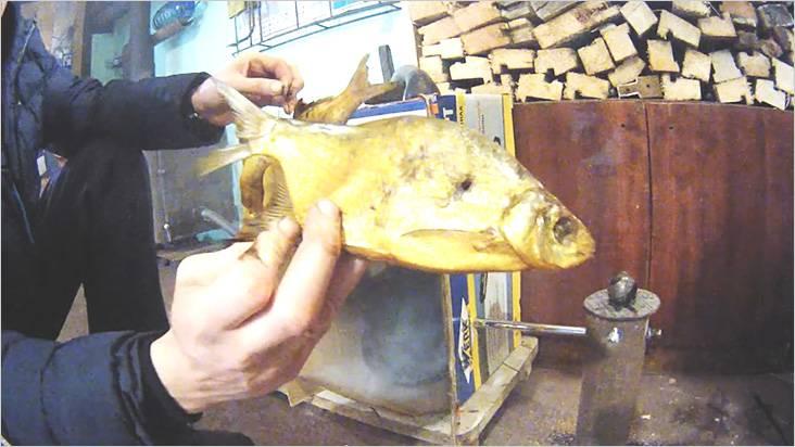 魚が進行したという事実は、スモークハウスがうまく機能することを示しています