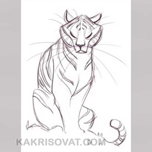Красивые рисунки для срисовки животные легкие