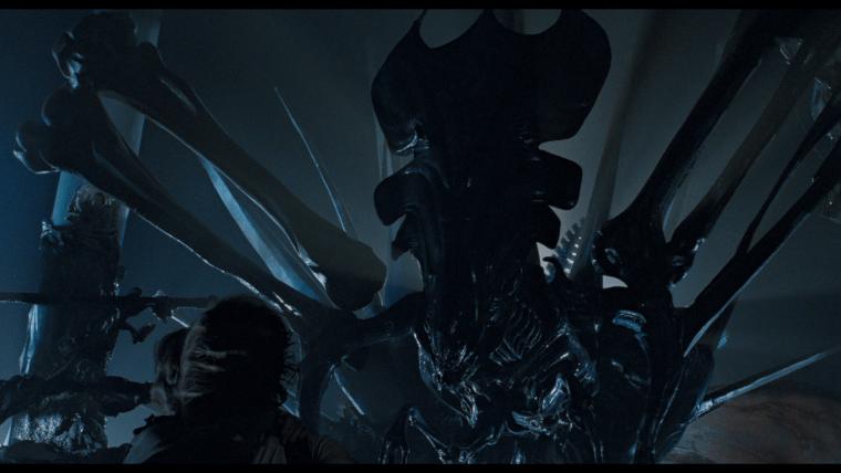 Alien Blackout Xenomorph Queen