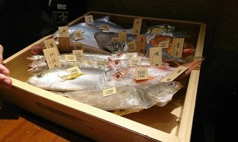 新鮮な魚 八吉