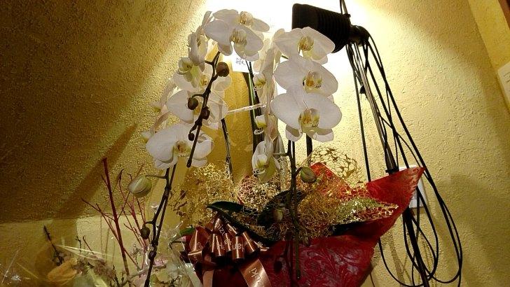 お花が飾られていました