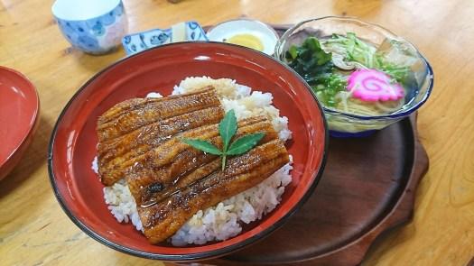 うなぎ 細麺うどんセット 高知県 大正町のうなぎ |JA高知はたであいの里直販所