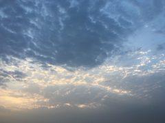 travel_raj-bhavan_p-04