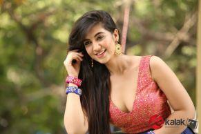 Actress Harshita Panwar Stills (4)