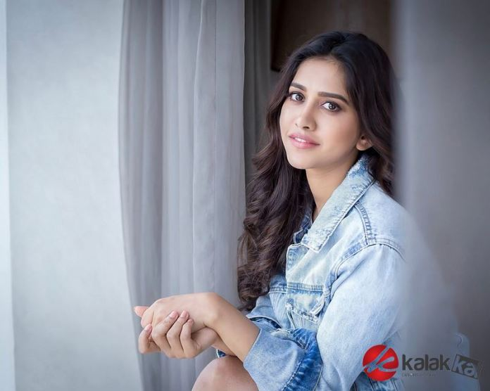 Actress Nabha Natesh Photos