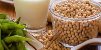 Soya Beans : Health Tips, Beauty Tips, Daily Health Tips, Tamil Maruthuvam Tips, Top 10 Best Health Benefits, Easy To Follow Daily Health Tips