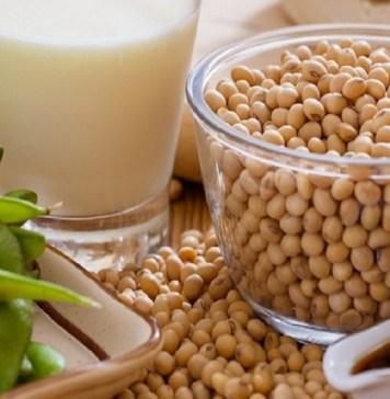 Soya Beans : Health Tips, Beauty Tips, Daily Health Tips, Tamil Maruthuvam Tips, Top 10 Best Health Benefits, Easy To Follow Daily Health Tips