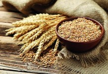 Health Benefits For Wheat : Health Tips, Beauty Tips, Daily Health Tips, Tamil Maruthuvam Tips, Top 10 Best Health Benefits, Easy To Follow