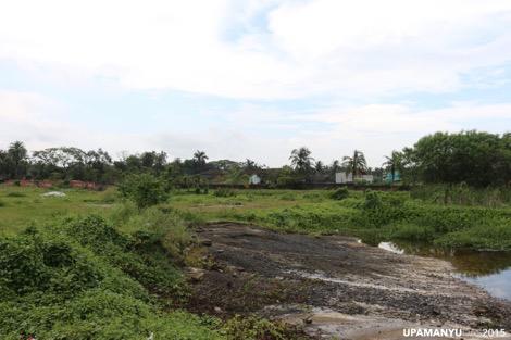 Patuli Landscape 1