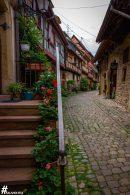 Eguisheim-IMG_2476