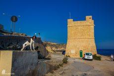 Malta_IMG_5827