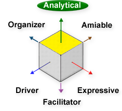 Analytical, Amiable, Driver, Expressive, Facilitator, Organizer