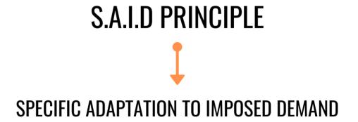 S.A.I.D-PRINCIPLE
