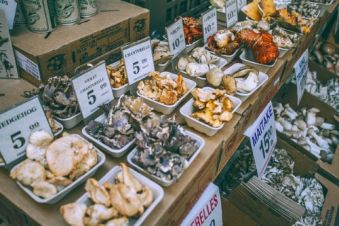 Variety of Mushrooms. Image by Maria Orlova.