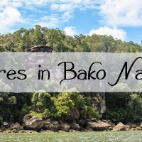 Adventures in Bako National Park, Borneo
